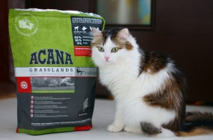 Корм для кошек Акана (Acana)