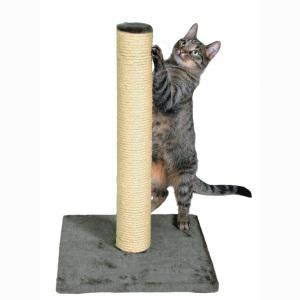 Какую когтеточку выбрать для кошки. Какая когтеточка лучше?